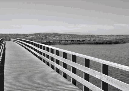 Ameaçado o último troço de costa natural do centro do algarve