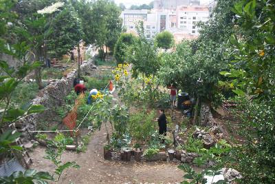 Uma experiência de horta urbana e muito mais… no fio da navalha