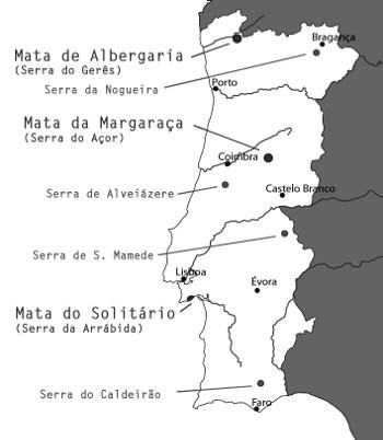 mapa_florestas