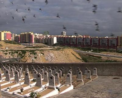 Demolições de pombais no Alto de S. João, Lisboa